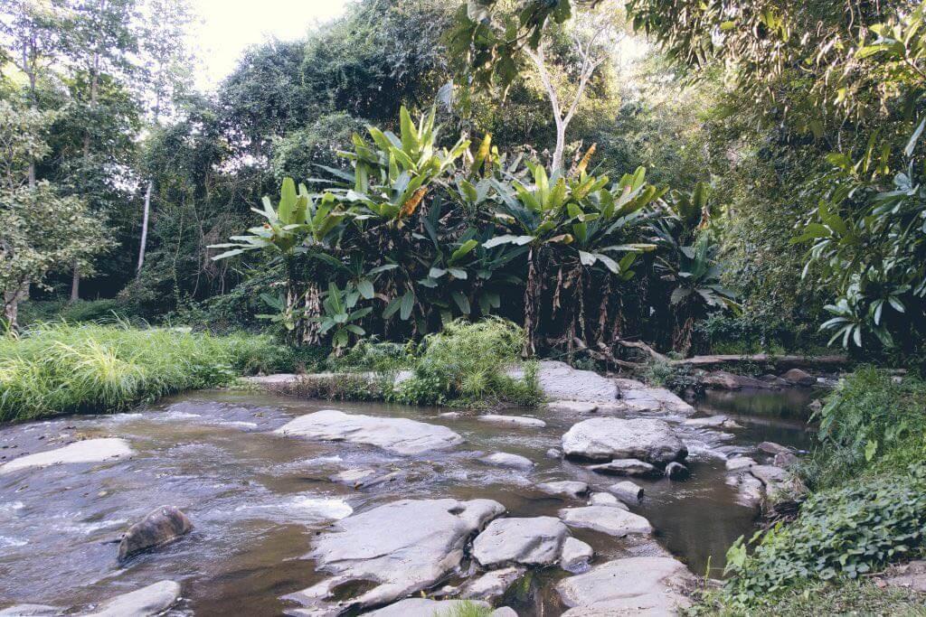 Mae Sa Wasserfall Level 1