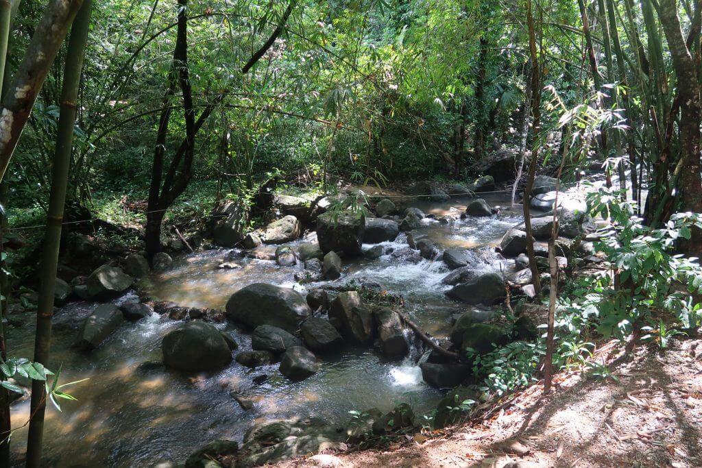 Fluss zum Bang Pae Wasserfall